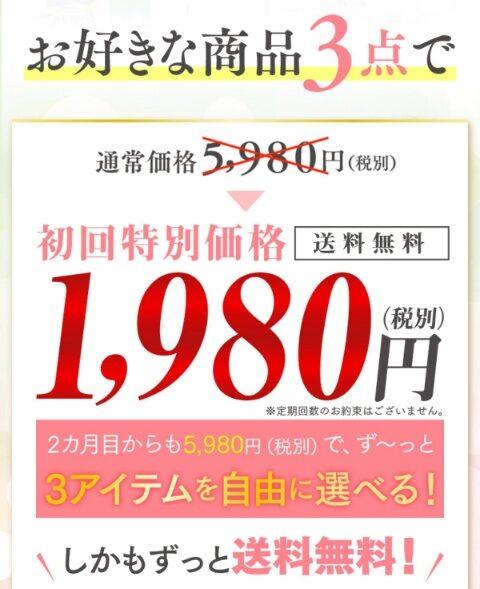 サブスクB初回1980円