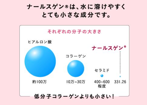 ナールスゲンはセラミドよりも小さい